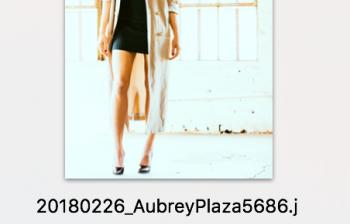 Aubrey Plaza - Indie Darling